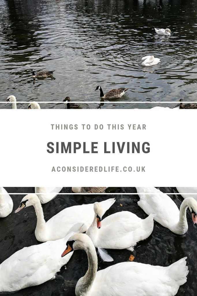 Simple Living Things To Do In 2018