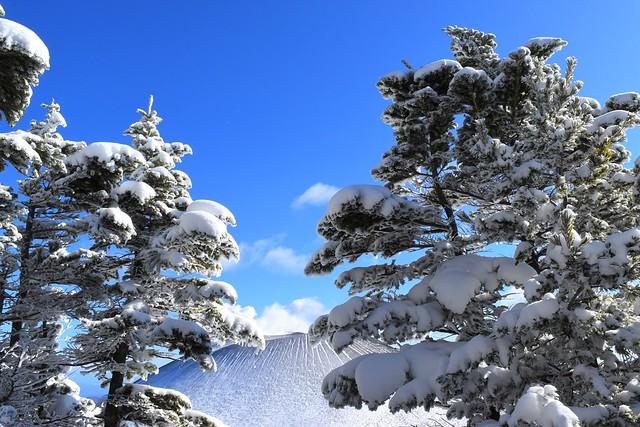 樹氷と浅間山