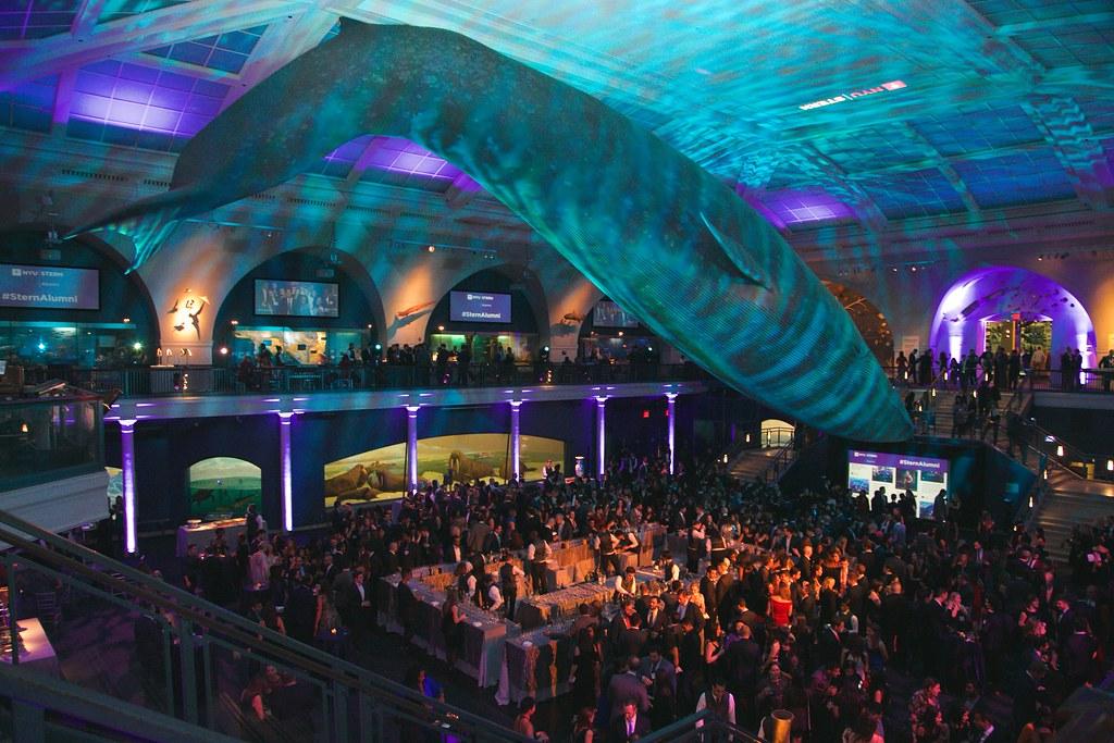 American Museum Of Natural History Nyu