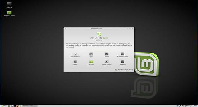 linumint-mate-desktop