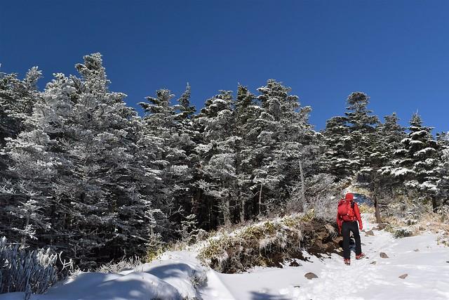 黒斑山の樹氷 雪山登山