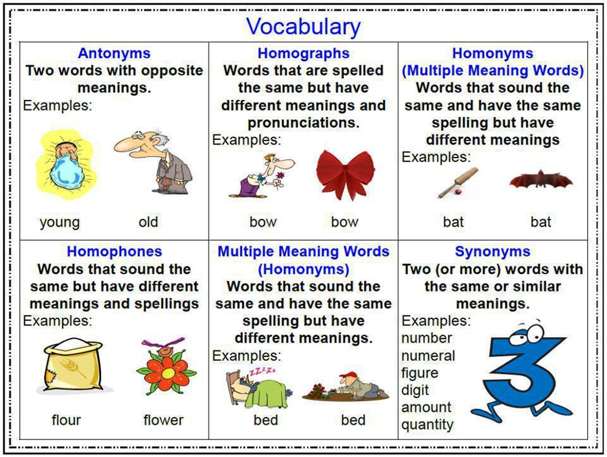 Antonyms, Homonyms & Synonyms in English 3