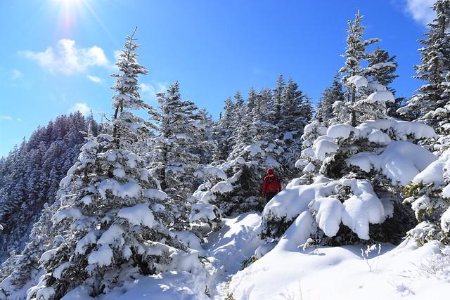 黒斑山 樹氷登山