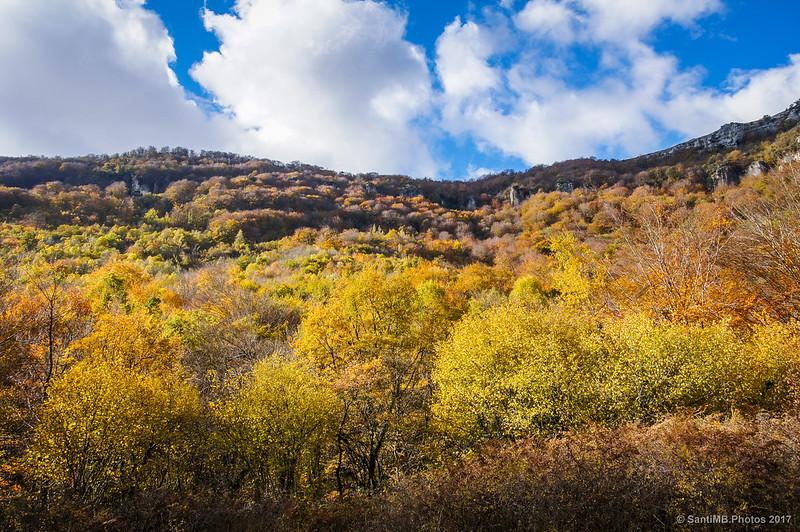 Cielo abierto saliendo de la Reserva Natural del Nacedero del Urederra