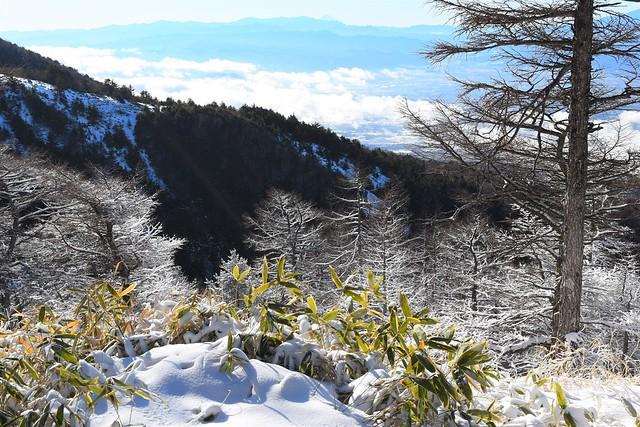 黒斑山の霧氷