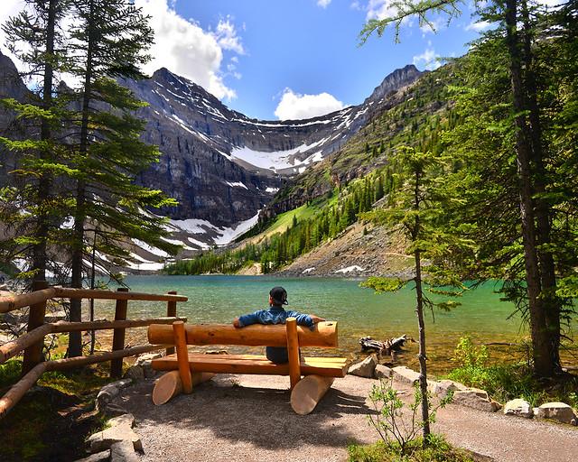 Sentado en un banco de madera entre árboles frente al precioso lago Agnes