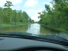 Roads under water in MIssissippi Delta