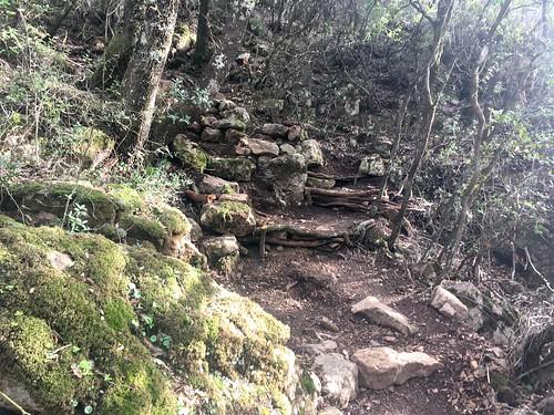 Des marches dans la montée vers Cantone Nieddu ?