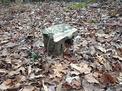 Cinder Block Near East Jones Creek