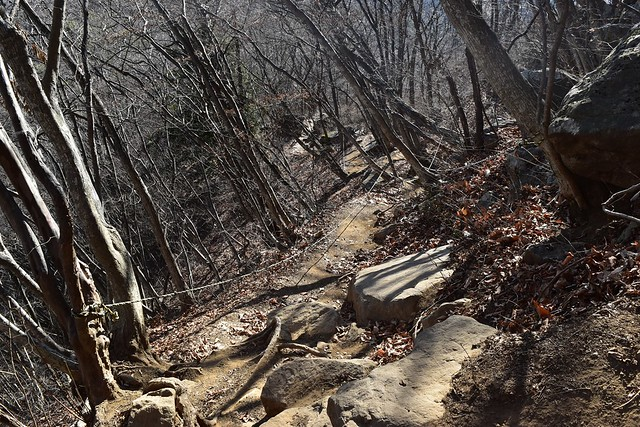 高川山の急登