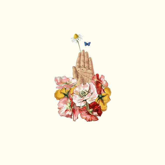 hand and flowers collage by laura redburn