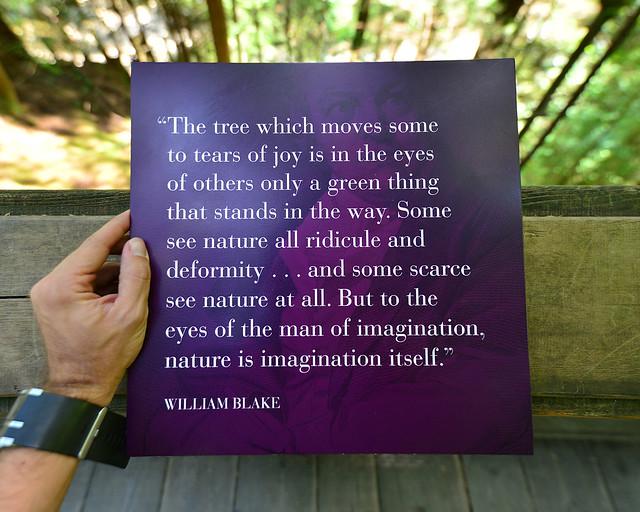 Uno de los muchos textos que se pueden leer paseando por los bosques de Capilano