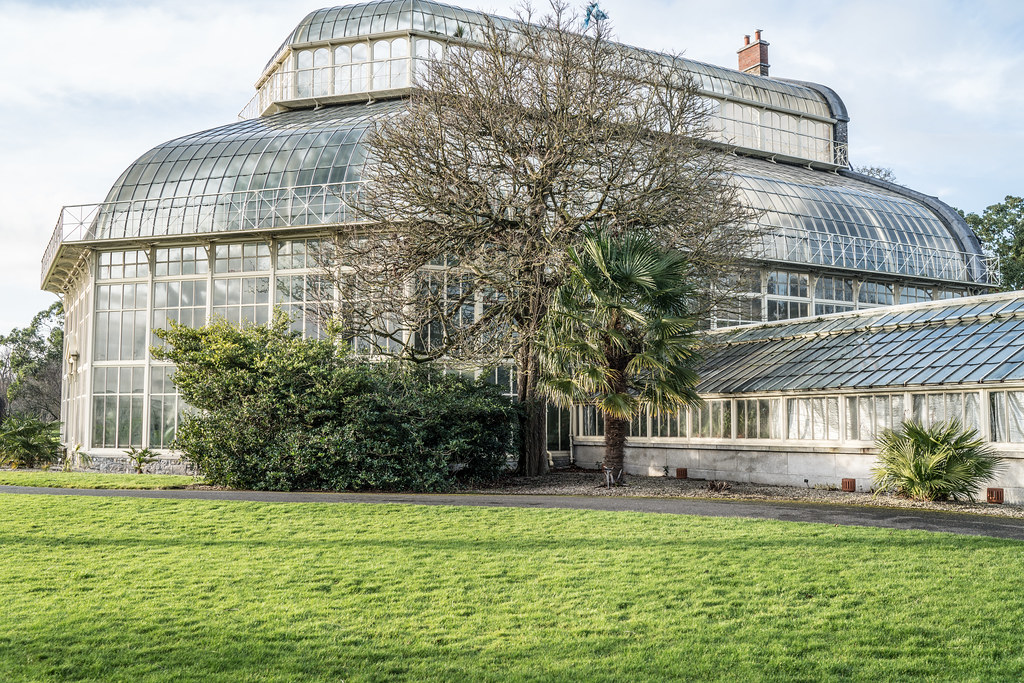 SOME OF THE GLASSHOUSES IN THE BOTANIC GARDENS 008