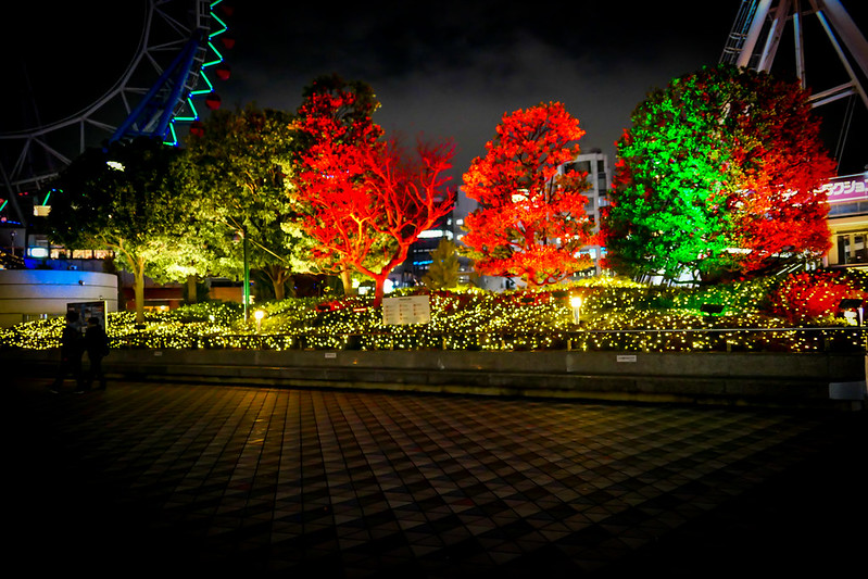 The One About Tokyo Dome City Winter Lights Garden