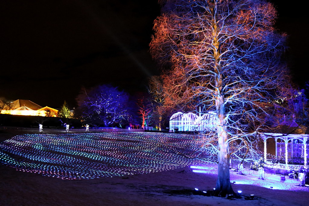 christmas light trail birmingham botanical gardens edgbaston birmingham england uk