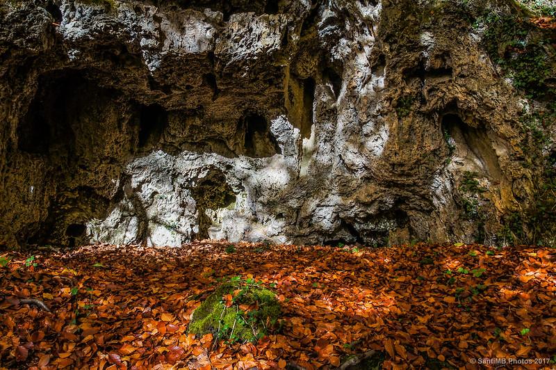 Roca calcárea del macizo de Urbasa