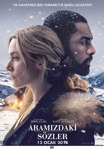 Aramızdaki Sözler - The Mountain Between Us