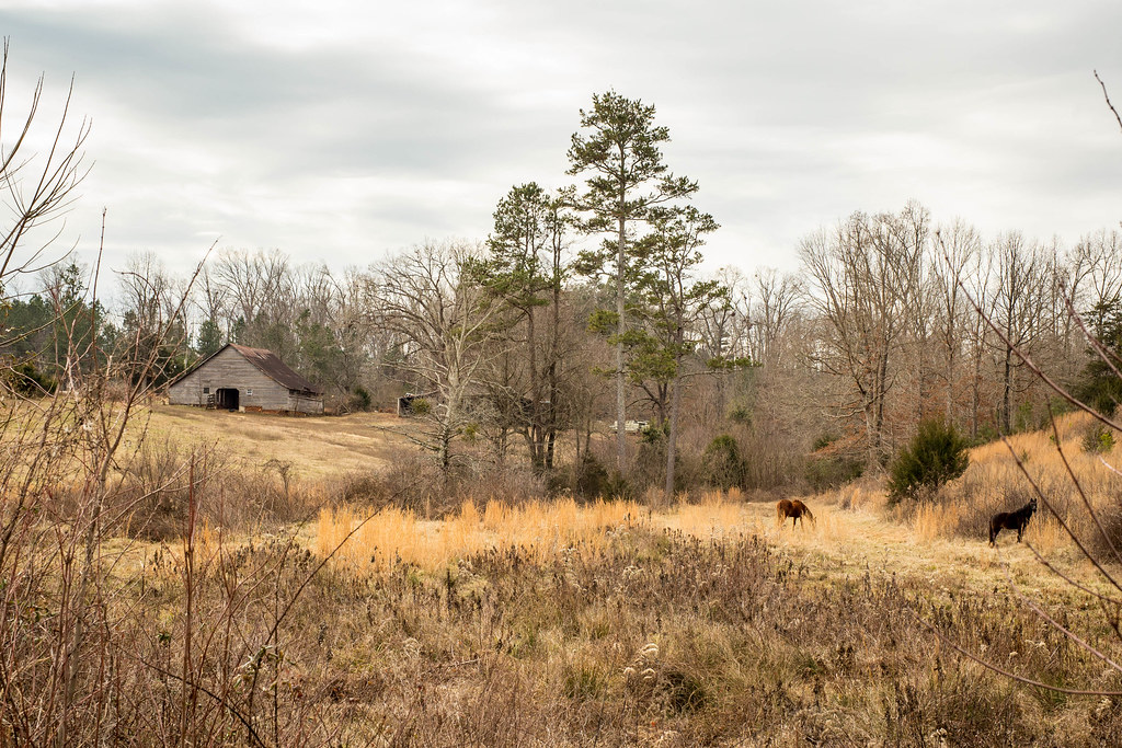 ... Farm Landscape - Oconee Co, S.C.   by DT's Photo Site - Anderson S.C. - Farm Landscape - Oconee Co, S.C. DAVID THOMPSON Flickr