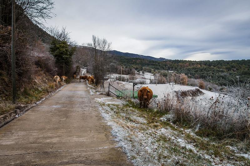 Saliendo de Sant Jaume de Frontanyà
