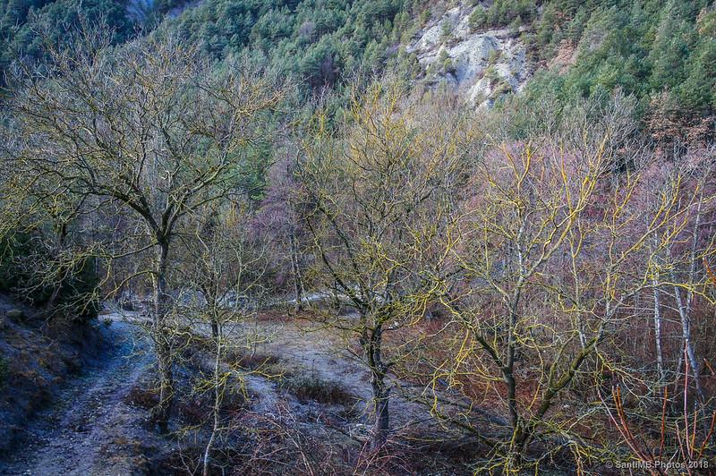 En la desembocadura del Grèixer en el Bastareny