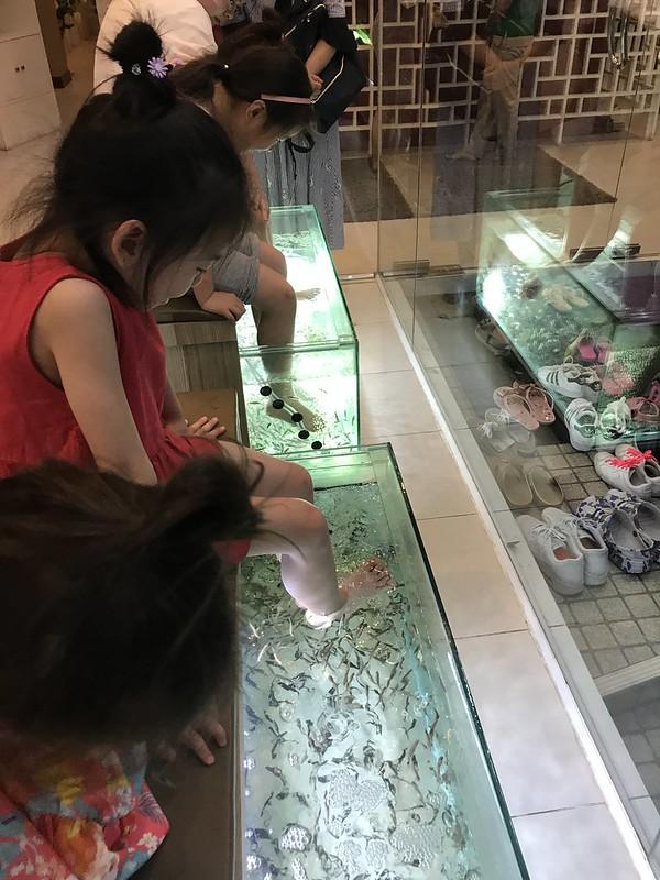 2018春节泰国曼谷-华欣-塔沙革/Ban Krut-苏梅岛一路向南自驾游 泰国旅游 第174张