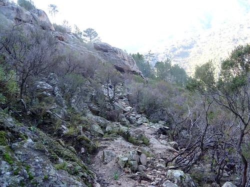 Dans la montée de Cinaghja : au-dessus de la sapara
