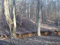 Upper Sugar Hill Creek Dam Ruins - West Side