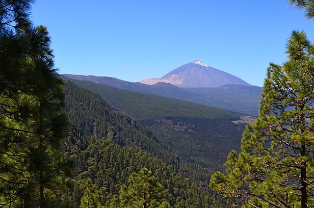 Classic view, Orotava Valley, Tenerife