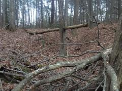 Sugar Hill Mining Camp - In-Ground Storage Eroded