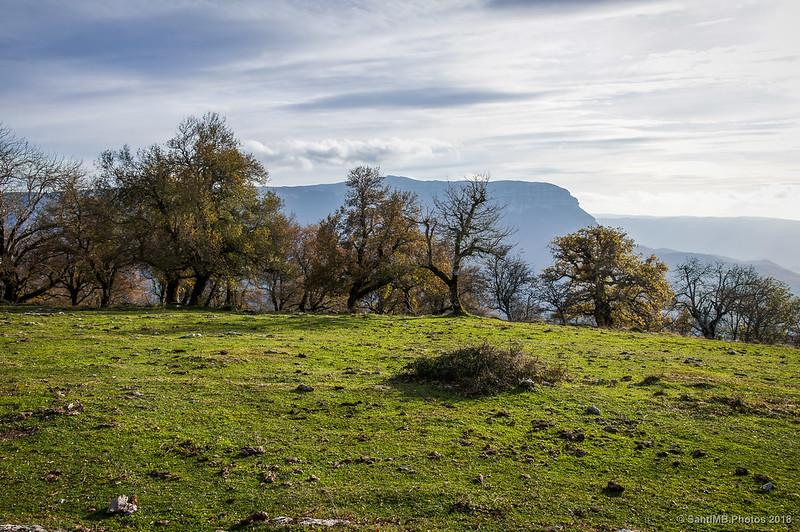 Un claro al oeste de San Miguel de Aralar