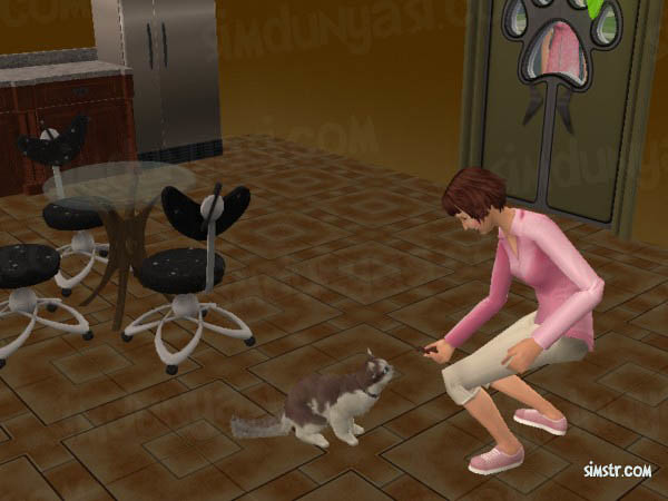 The Sims 2 Pets Give Cracker