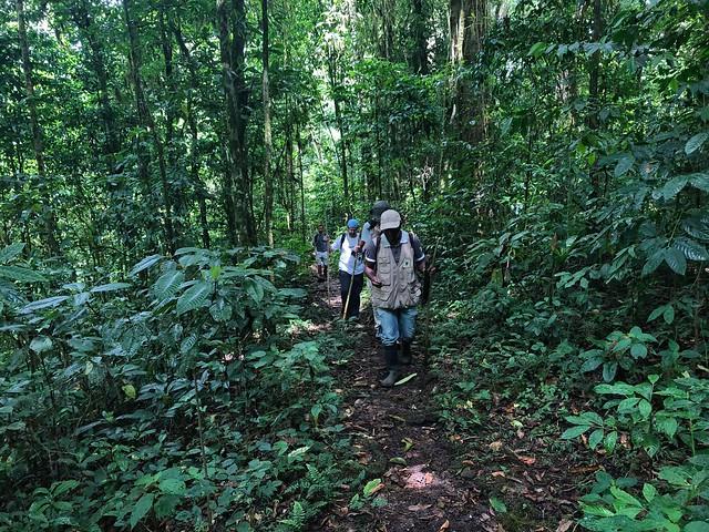 Expedición Pangea caminando por el Parque Natural Obo rumbo a Lagoa Amelia