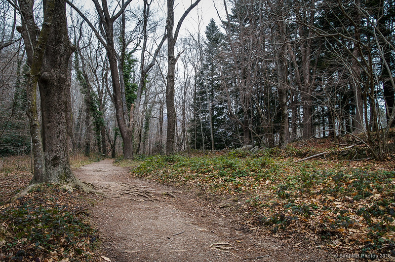 Camino del pantano de Santa Fe a Can Casades