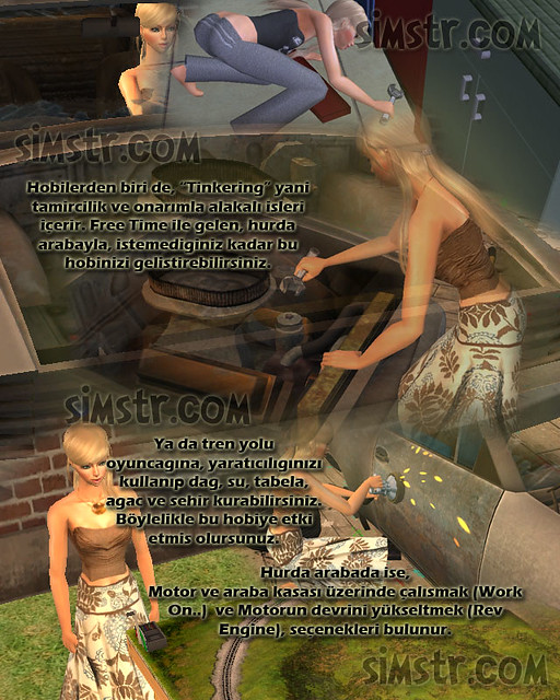 The Sims 2 FreeTime Hobbies Tinkering