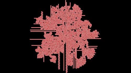 2D Accretor Cellular Automaton