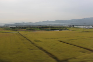 View from the train near Daegu | by Timon91