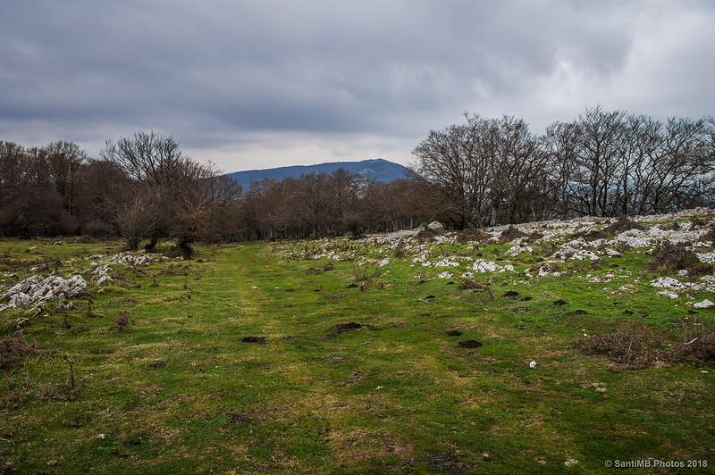 El Maiza desde el camino que lleva a San Adrián de Lizarraga