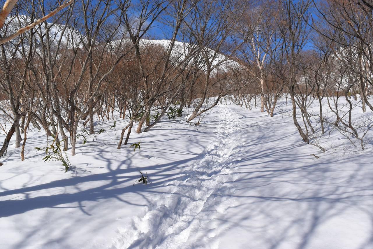 冬の那須岳登山道