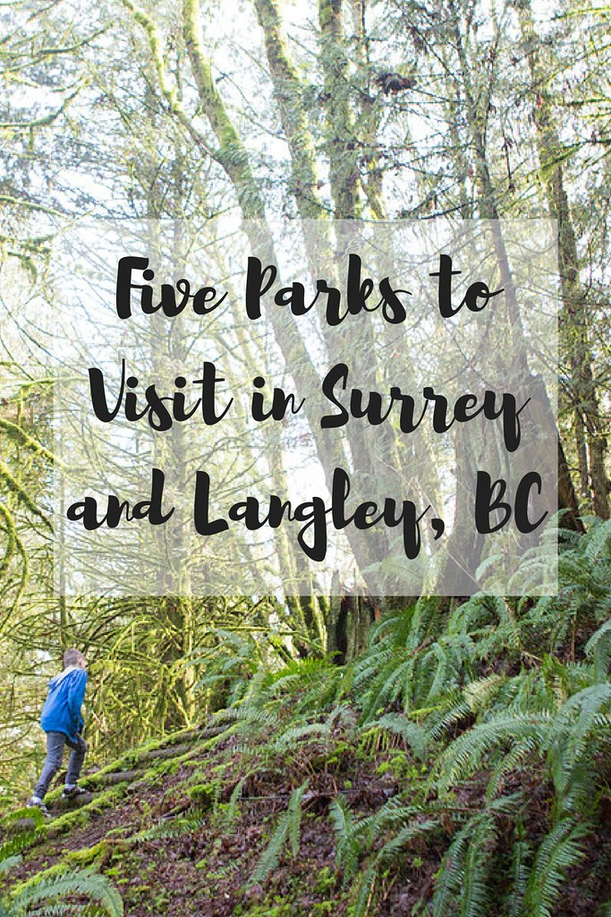 Looking for a beautiful place to explore in Surrey and Langley, BC? These are great family-friendly walks that will immerse you in nature!