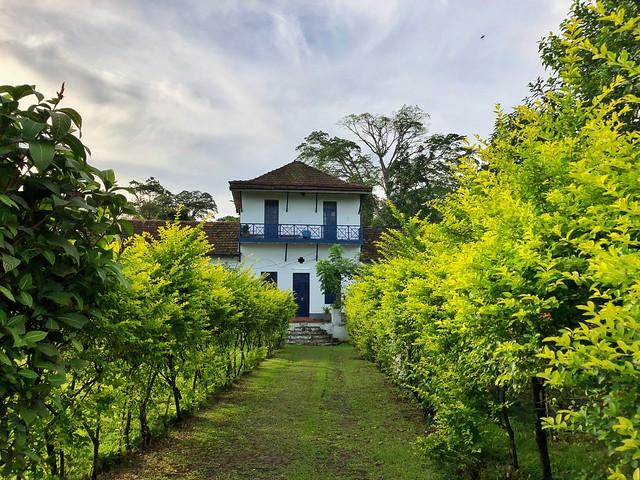 Roça de Santo Tomé y Príncipe