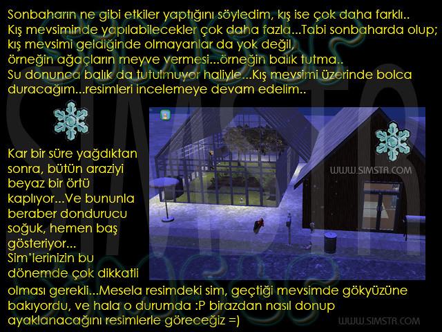 The Sims 2 Seasons Winter Kış