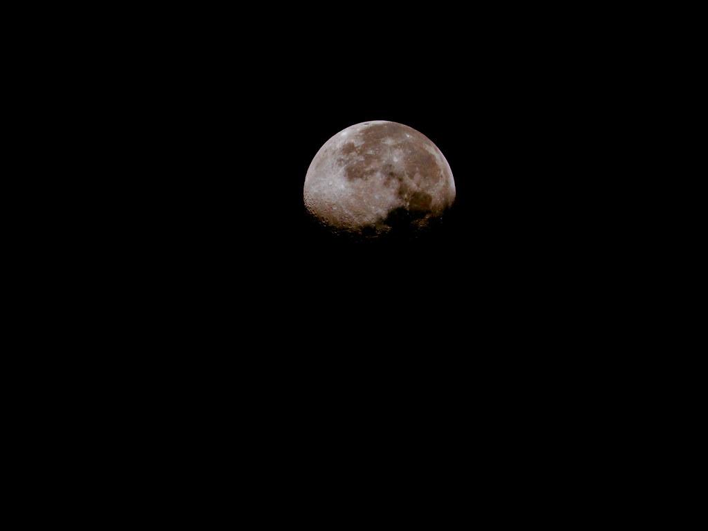 Bajo la misma luna | Sol MancerA | Flickr