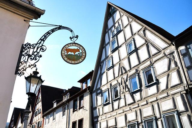 Hirschhorn, die Perle des Neckartals ... Burg, Stadtmauer, Altstadt, Neckar, Altdeutsche Wein- und Bierstube, Apfelstrudel mit Sahne ... Foto: Brigitte Stolle