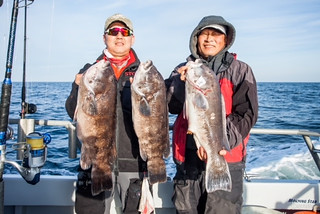 Men holding tautog on a boat