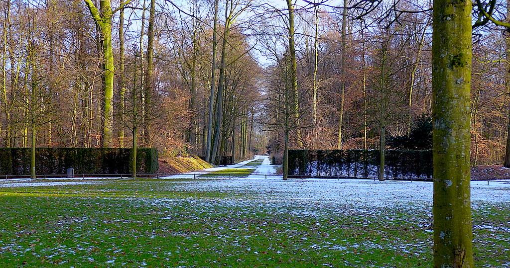 26 февраля 2018, в парке Бенрат (Дюссельдорф).