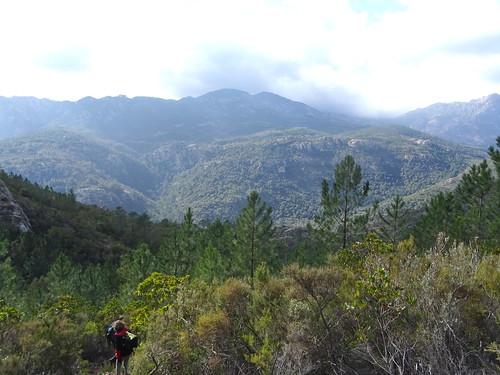 Dans la descente de Fugulina : le versant Pisciaronu en face