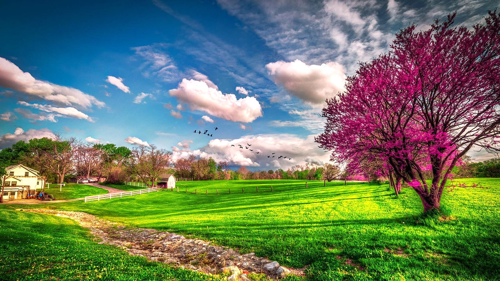 Beautiful Spring Scenery Wallpapers Hd 1080p 1920x1080 Des Flickr
