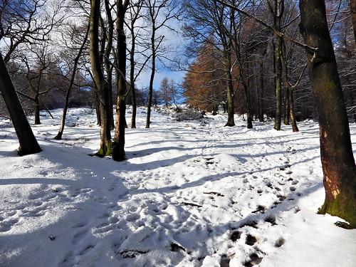 Winhill Plantation