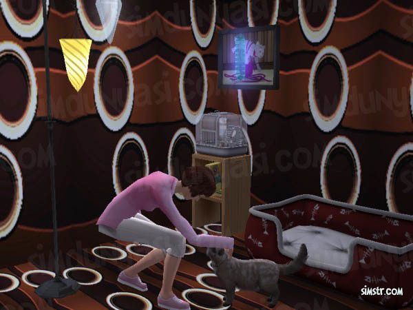 The Sims 2 Pets Teach Command Come Here