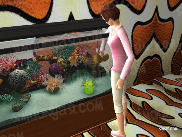 The Sims 2 Pets Aquarium Clean